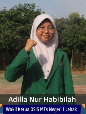 Adilla Nur Habibillah